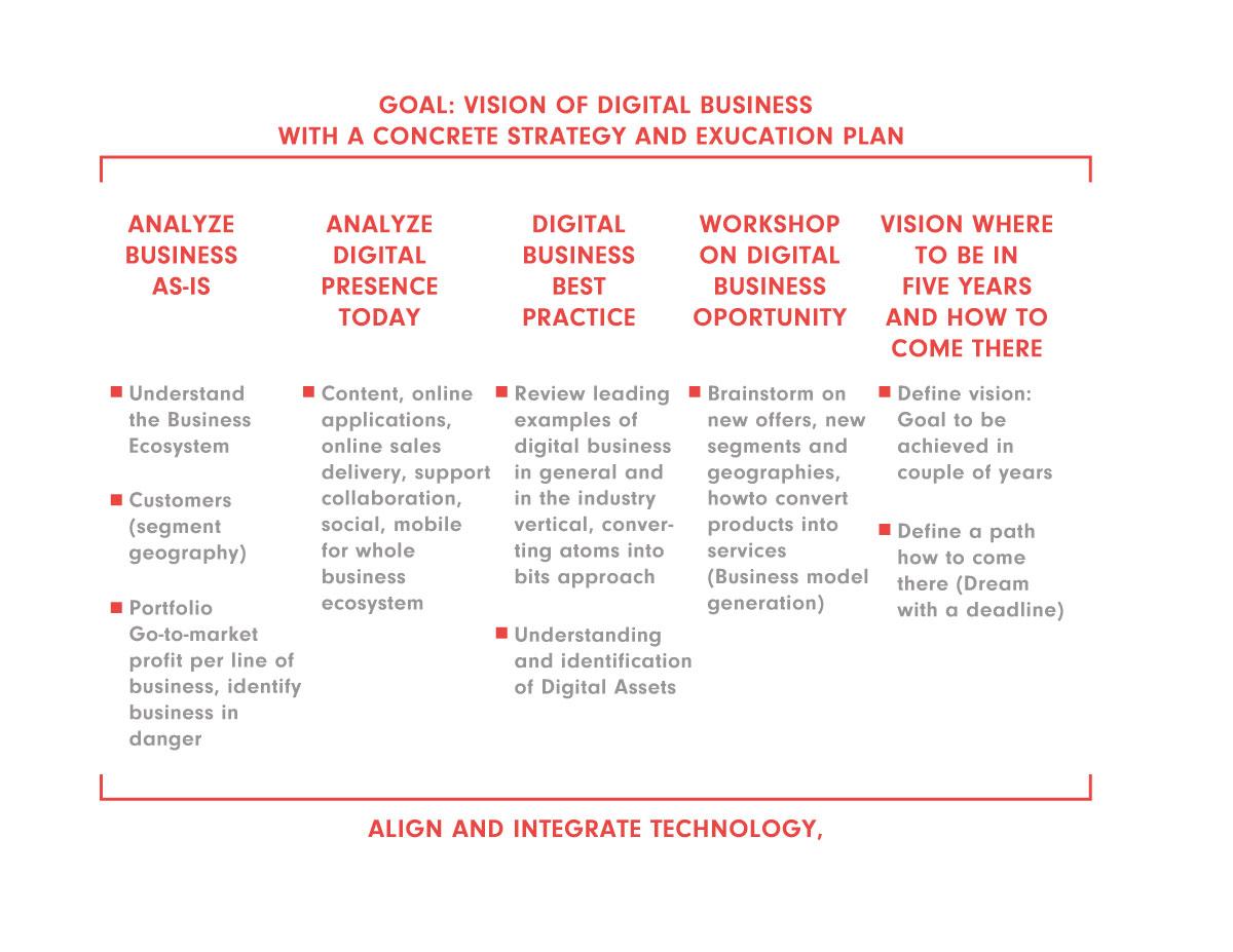 Digital-framework---Petrol